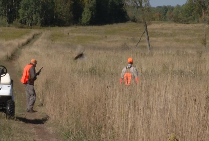 Disabled Veterans Go Pheasant Hunting For Free at Northern ...